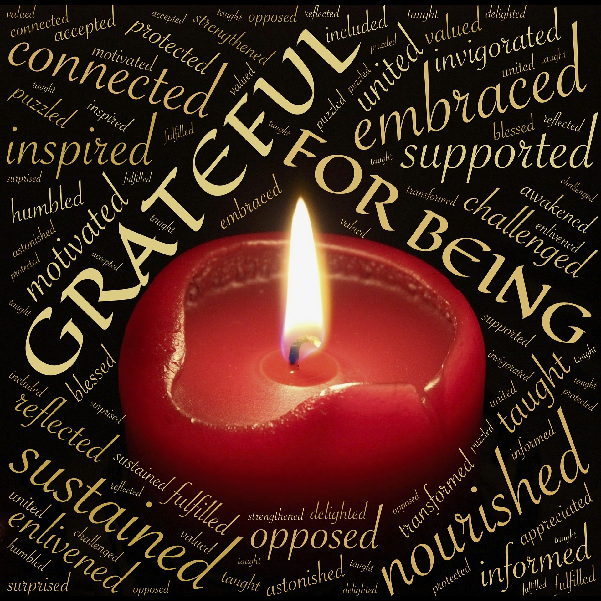 Practice Gratitude La Luz Therapy www.laluztherapy.com reiki meditation wellness vocal sound therapy Lucy Toppetta